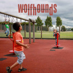 The Wolfhounds – Middle Aged Freaks