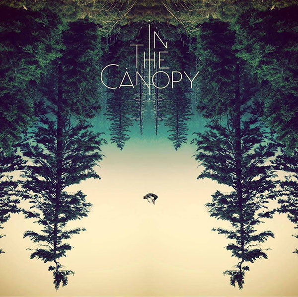 In The Canopy - The Light Through