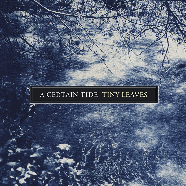 Tiny Leaves - A Certain Tide
